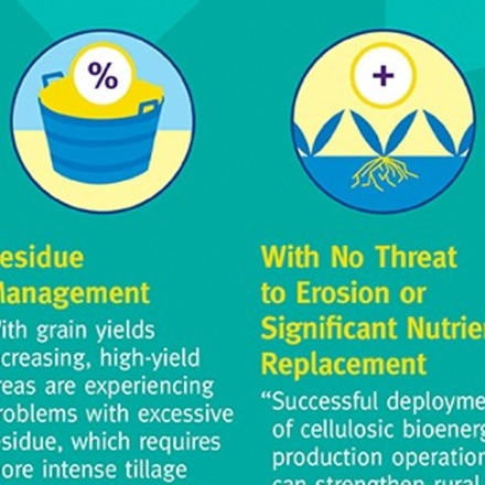 DSM Infographics